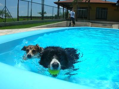 nadando4
