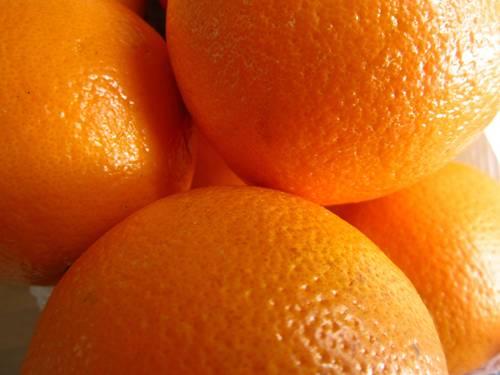 laranja modnar