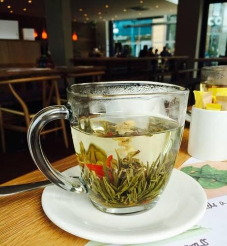 chá erva cidreira
