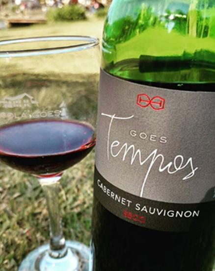 vinho goes tempos3
