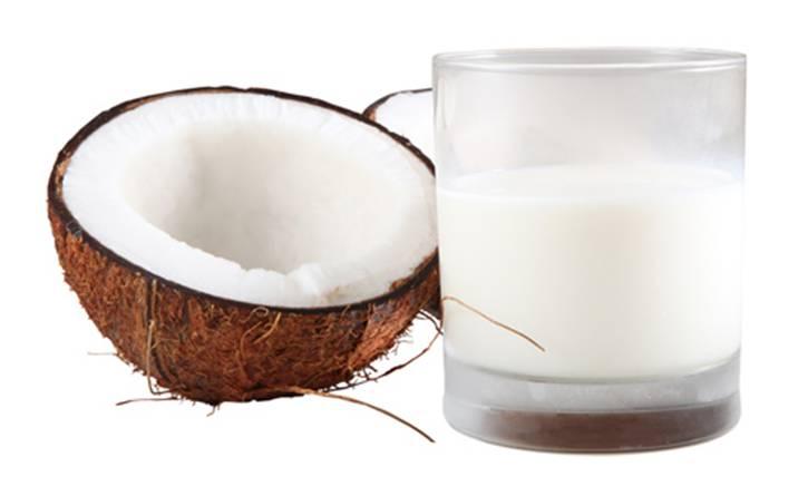 coconut  milk on  white background