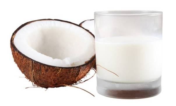 coconut  milk on  white background