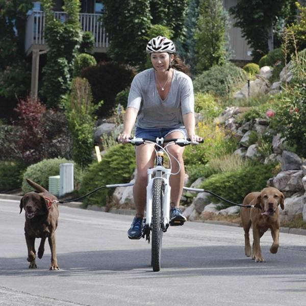 cycleash_08