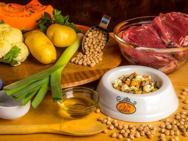 la-pet-cuisine-comida-natural-feita-por-uma-veterinaria-e-uma-chef-de-cozinha-para-agradar-ao-paladar-e-a-saude-de-gatos-e-cachorros