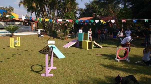 parque-de-diversoes-para-cachorros-projeto-de-revitalizarao-do-espaco-publico-com-playground-criado-para-cachorros-promovendo-a-interacao-com-seus-humanos