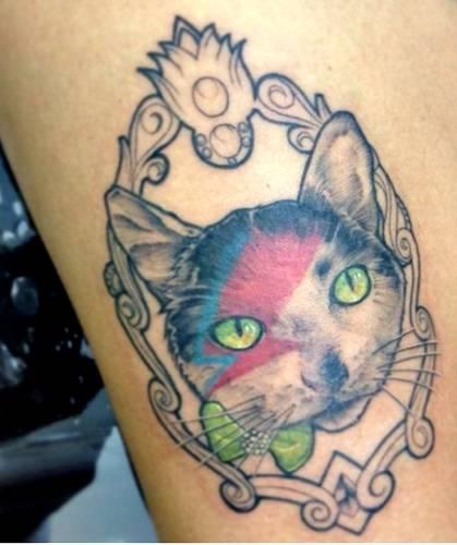 gato-tatuagem