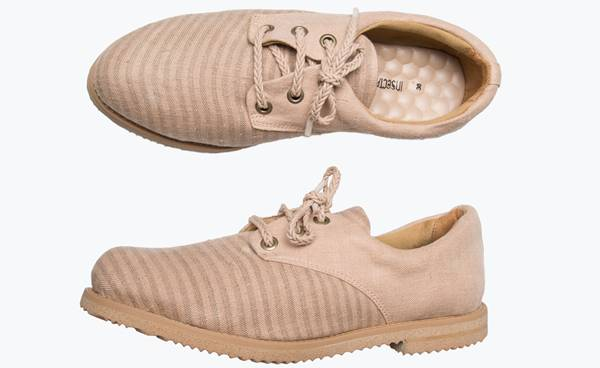 oxford-acacia-divulgacao-insecta-shoes