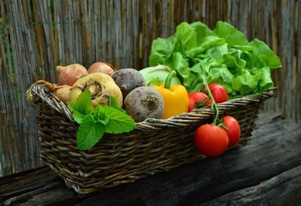 dieta-detoxificante-limpeza-organismo
