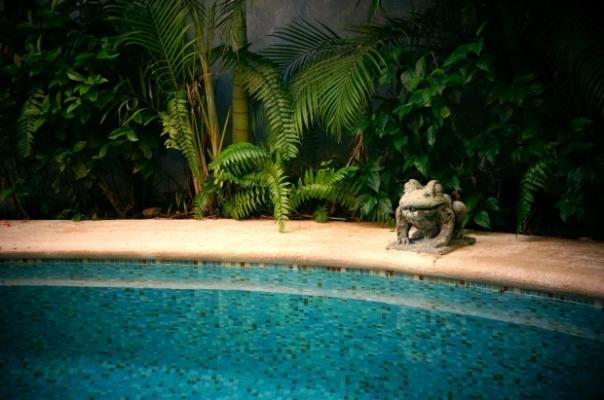piscina-hylarycl