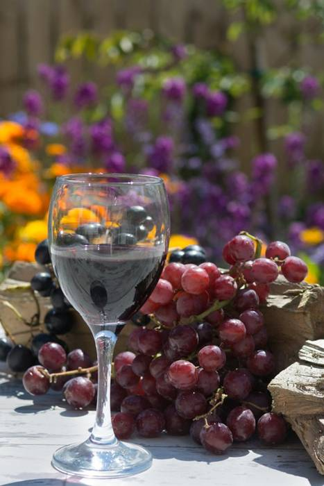 vinho-mais-saudavel