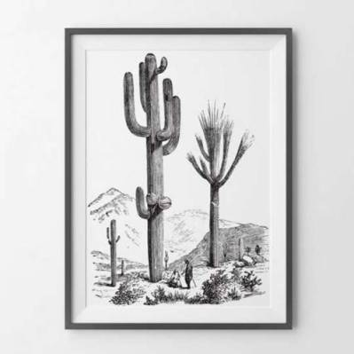 Decohouse-Poster-A2---Big-Cactus-0920-660673-1-zoom