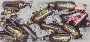 beer_garrafas_no_gelo_2____rafael_guirro