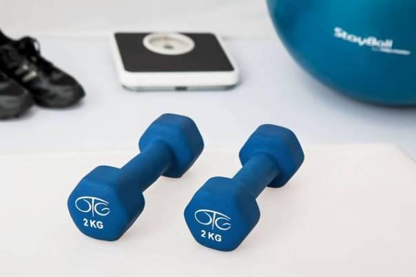 fisioterapia exercícios academia