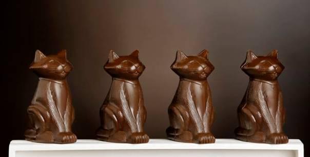 gatinhos chocolate