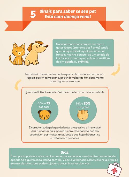 infografico pets1