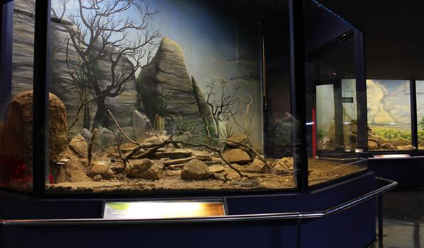 museu-biologico.png