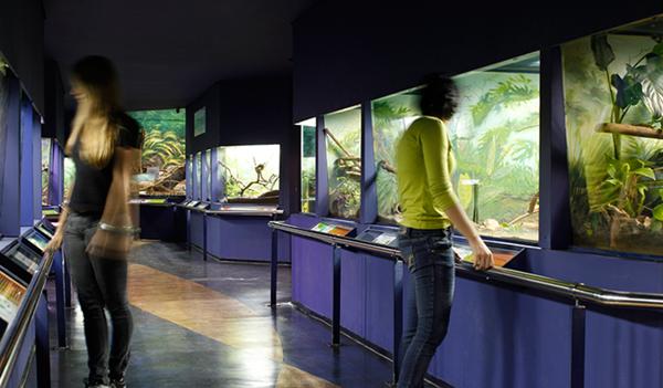 museu_biologico_2.png