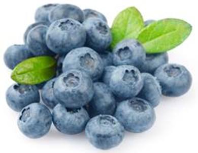 blueberry mirtilo