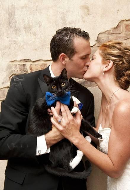 casamento gato Reese Moore Photography