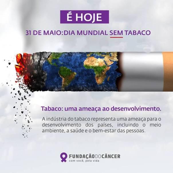 dia mundial sem tabaco e o planeta
