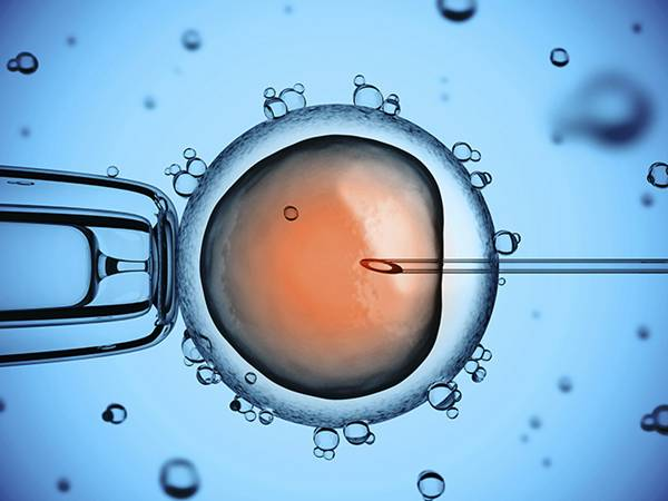 diocesephoenix-catholic-in-vitro-fertilization