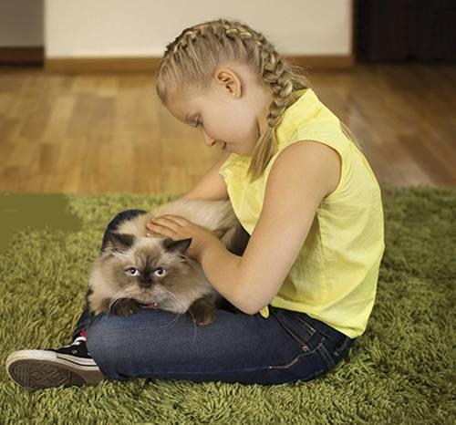 gato com menina criança