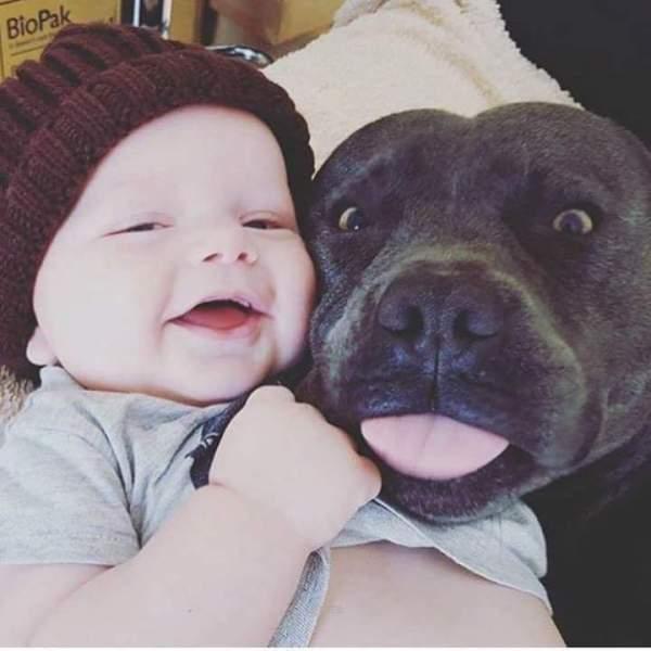 bebe e cachorro