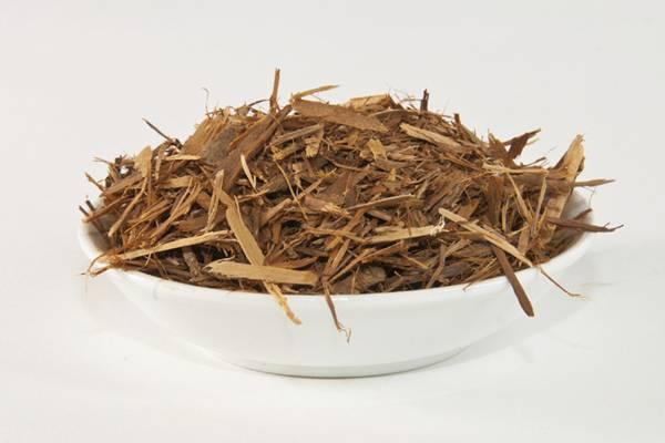 Catuaba herbs america