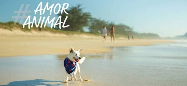 pet-animais-ferias-sorrindo-lugares-petfriendly-passeios-viagem-drogavet-farmacia-manipulacao-veterinaria-turismo-1346x757