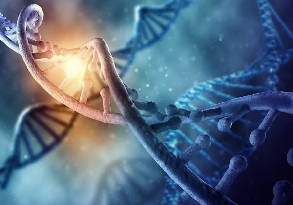 shutterstock dna genetica
