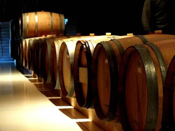 vinho barrica bruno scherer