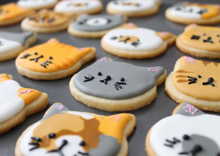 biscoitos formato gato
