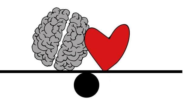 cerebro coracao elisariva pixabay