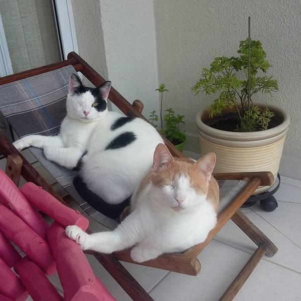 Sebastian e Amelie