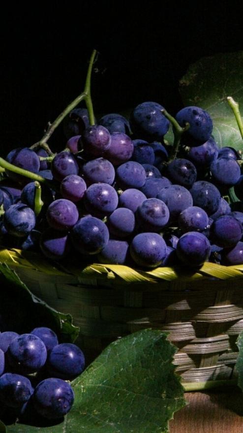 uvas escuras