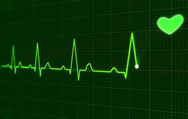 coração pulsação pixabay