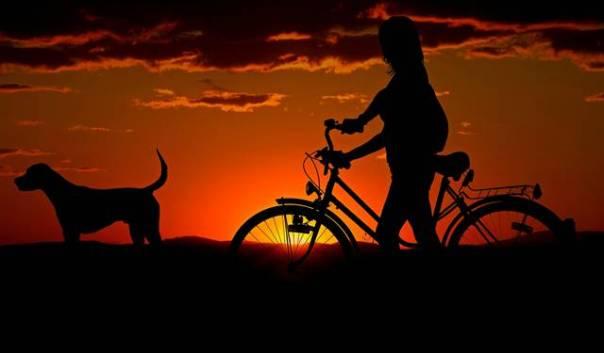 mulher cachorro bicicleta
