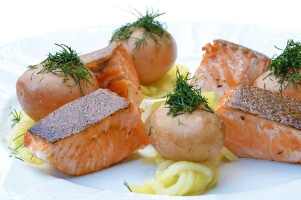 salmão pixabay