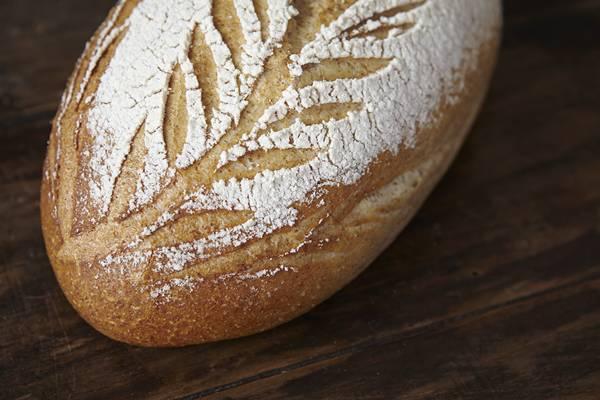 fermentacao pão