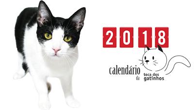 capa calendario gatos 2018