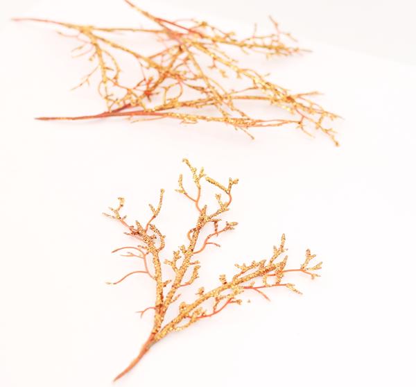 ramos ou galhos