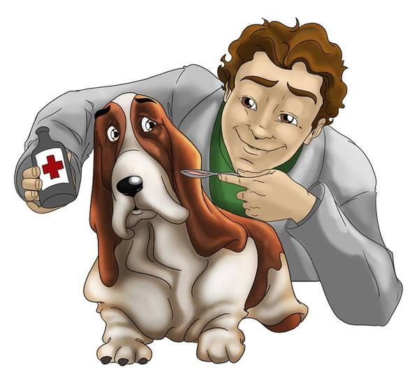 veterinario remédio cachorro andresantanams pixabay
