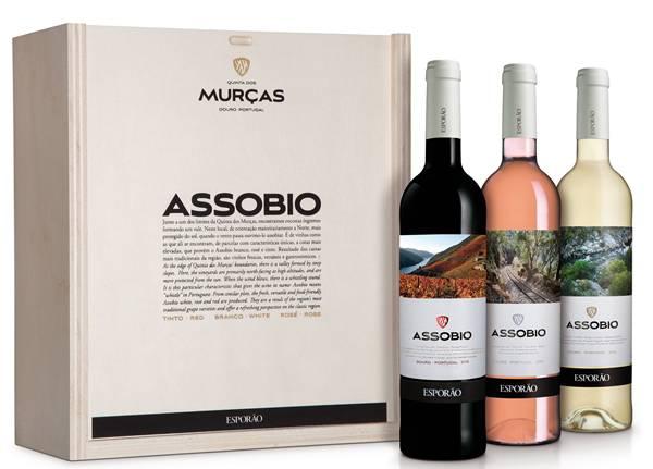 vinhos assobio cx madeira