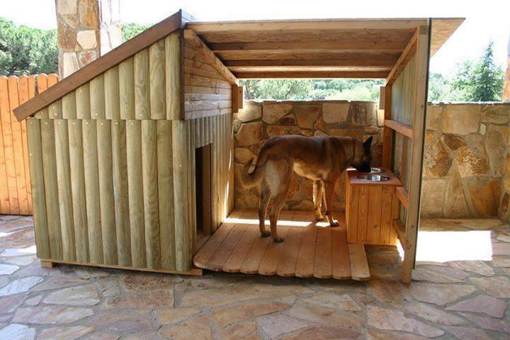 casinha cachorro goodshomedesign