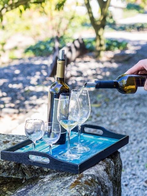 Prova de vinho no Vale do Douro
