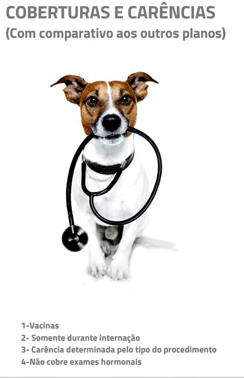health for pet 2
