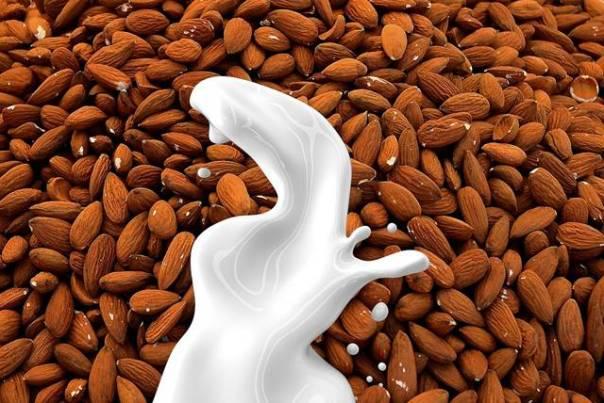 leite de amendoa lisa redfern - pixabay