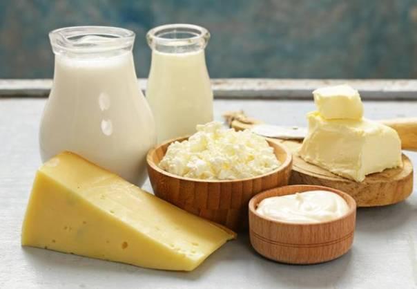 produtoc lacteos leite queijo lactose