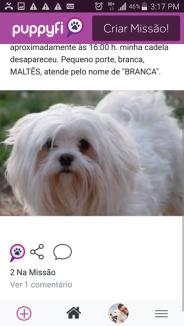Puppyfi 4