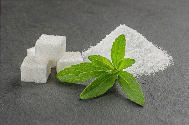 stevia live science